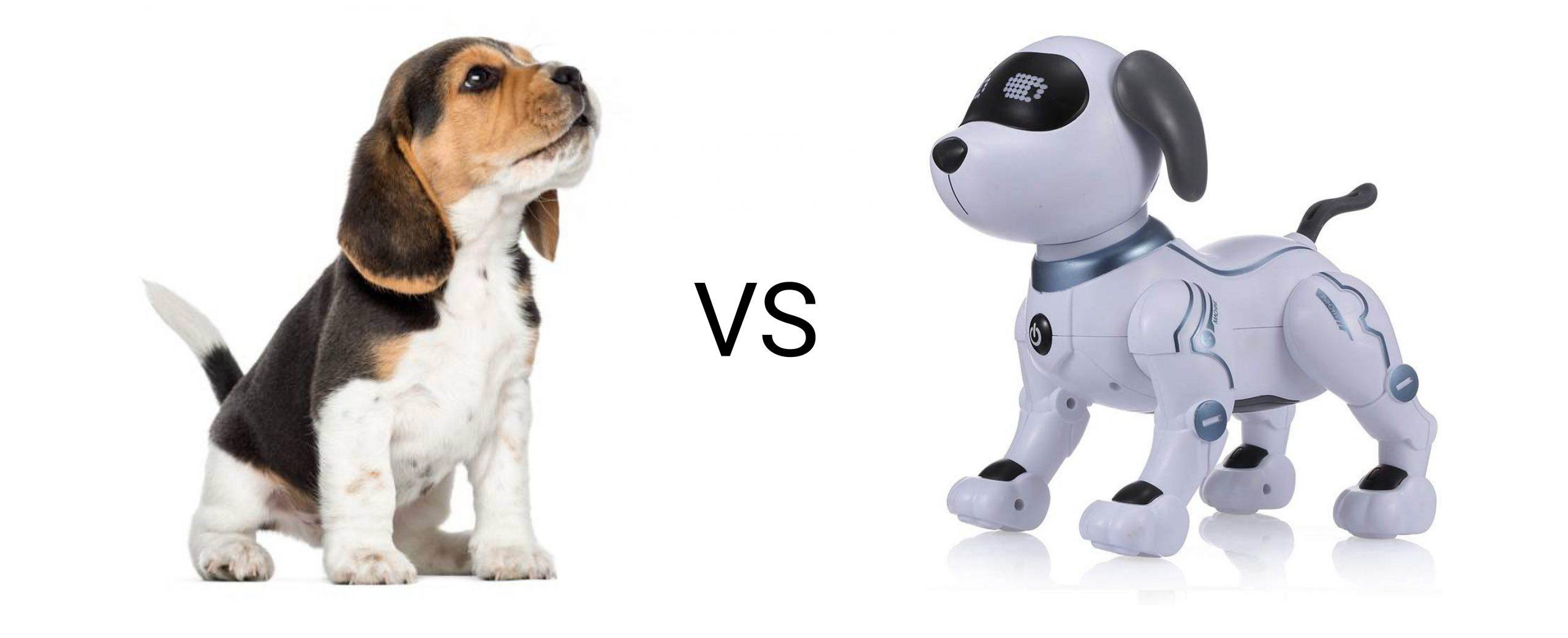 Low tech vs high tech : quelle différence ?
