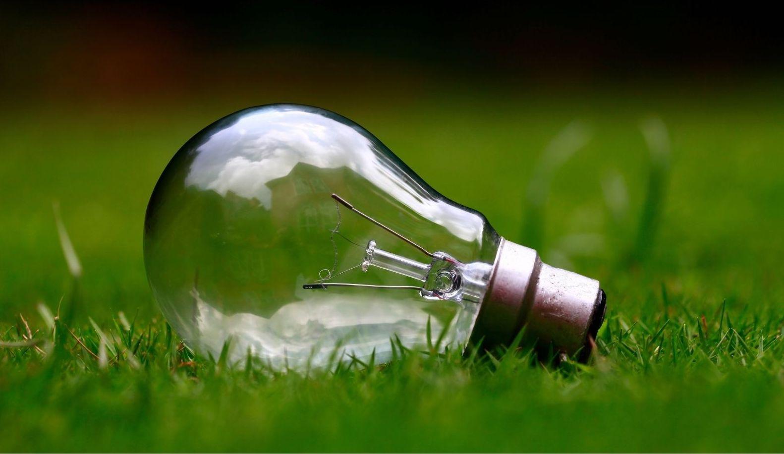 Les applications qui nous aident à vivre de manière plus éco-responsable